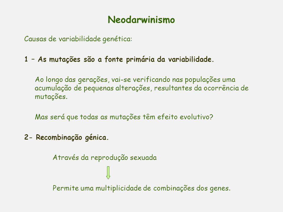 Neodarwinismo Uma das dificuldades de Darwin era explicar a origem da variação. As populações não são geneticamente uniformes. Possuem uma enorme vari