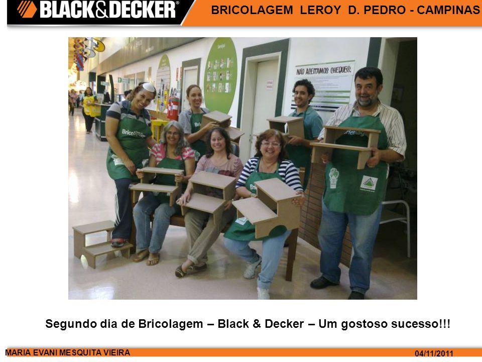 MARIA EVANI MESQUITA VIEIRA 04/11/2011 BRICOLAGEM LEROY D.