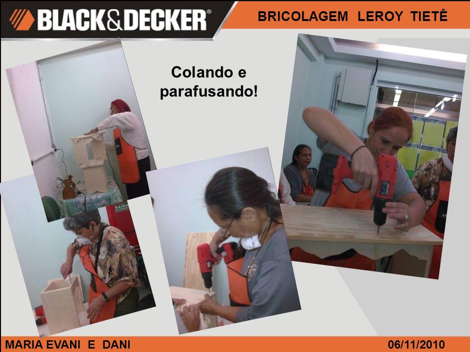 MARIA EVANI E DANI BRICOLAGEM LEROY TIETÊ 06/11/2010 Colando e parafusando!