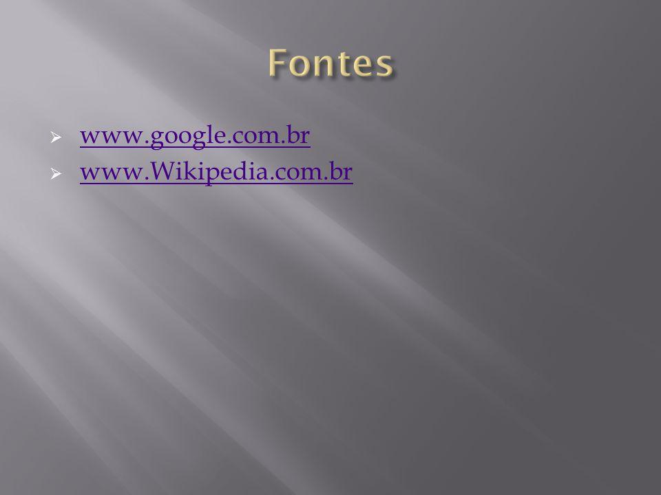 www.google.com.br www.Wikipedia.com.br