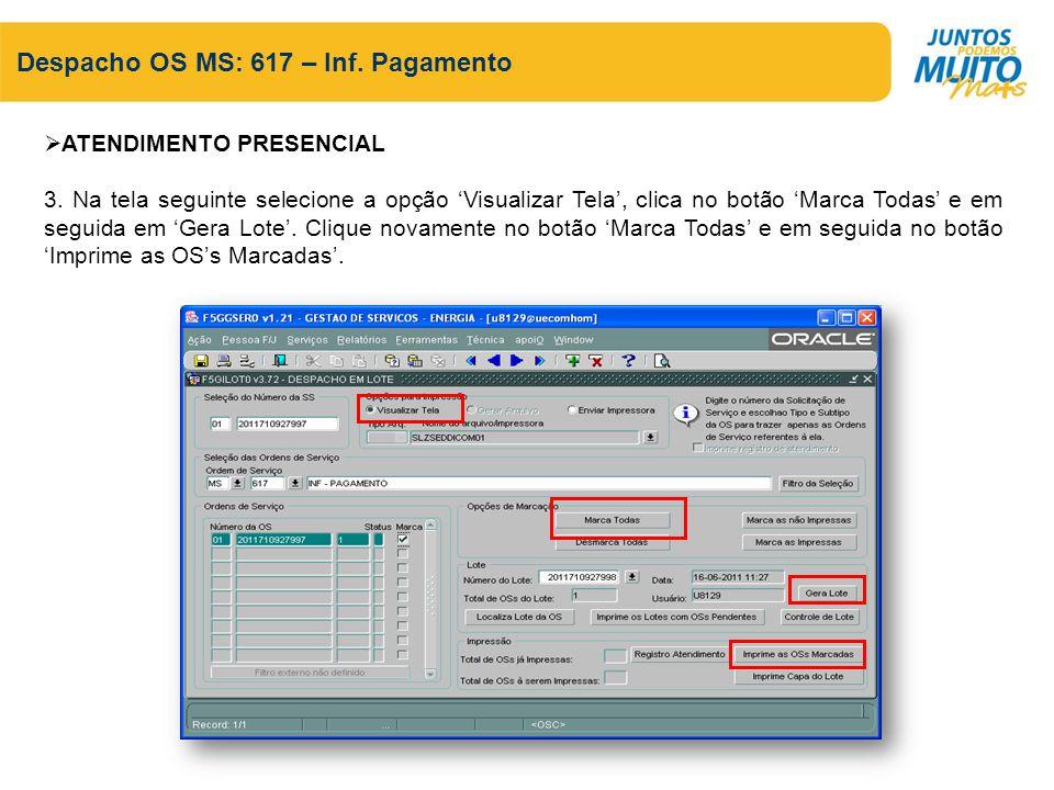 Despacho OS MS: 617 – Inf. Pagamento ATENDIMENTO PRESENCIAL 3. Na tela seguinte selecione a opção Visualizar Tela, clica no botão Marca Todas e em seg