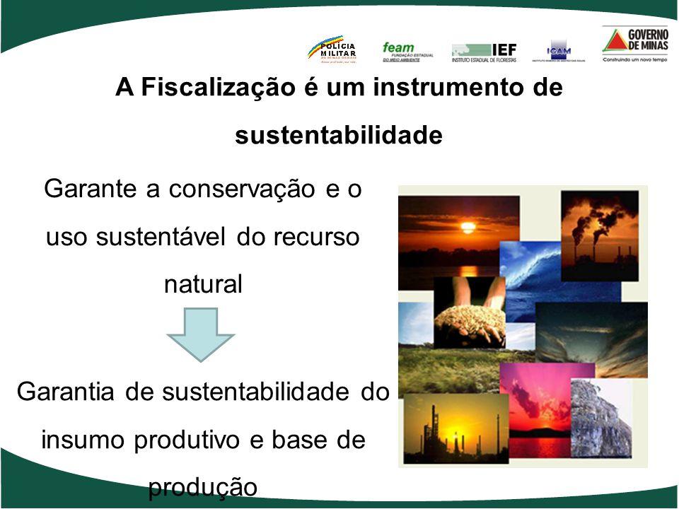A Fiscalização é um instrumento de sustentabilidade Garante a conservação e o uso sustentável do recurso natural Garantia de sustentabilidade do insumo produtivo e base de produção