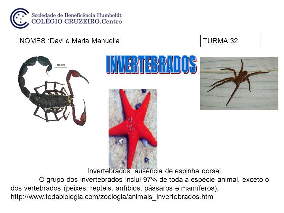 NOME: Henrique e MateusTURMA:32 Uma característica comum a todos os invertebrados é a ausência da espinha dorsal.