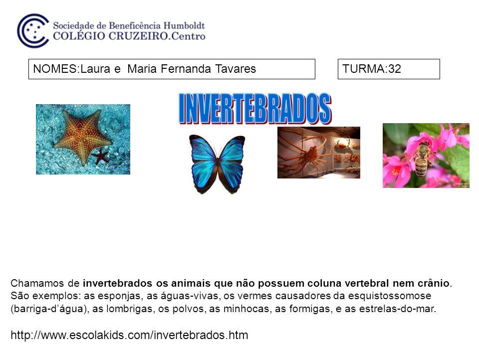 NOMES:Maria Fernanda Sarkis B.