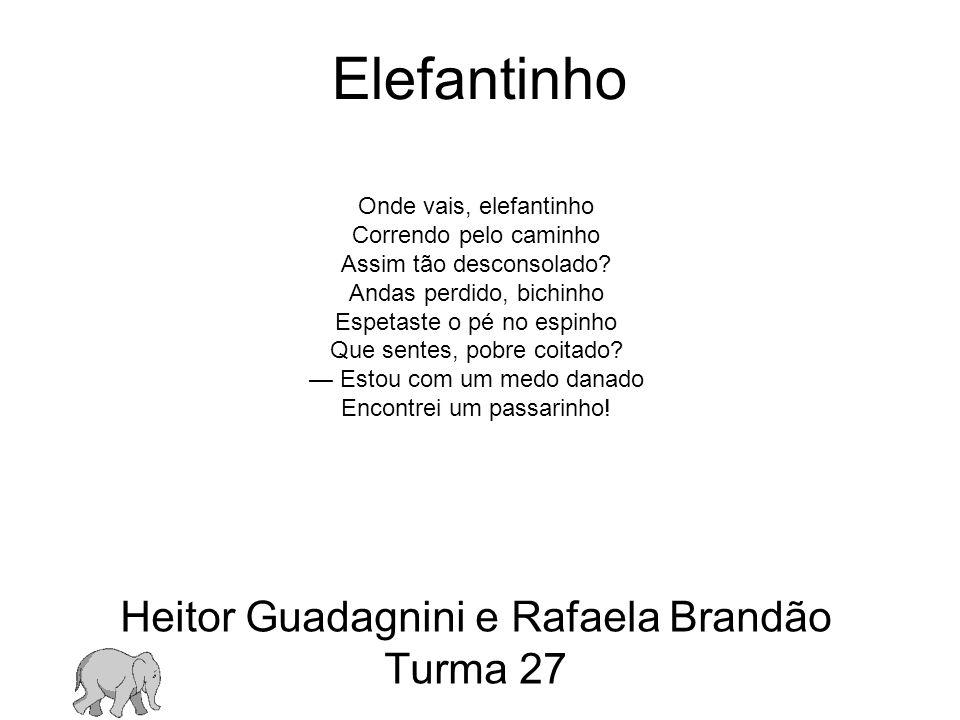 Heitor Guadagnini e Rafaela Brandão