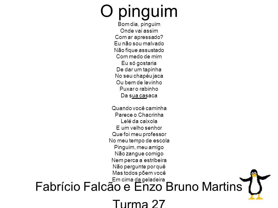 Enzo Bruno Martins e Fabricio Falcão Fardim