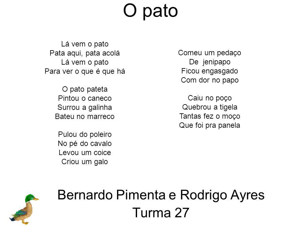 Bernardo Pimenta Sym e Rodrigo Melon Ayres