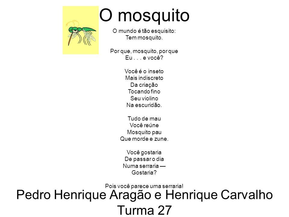 O mosquito Pedro Henrique Aragão e Henrique Carvalho Turma 27 O mundo é tão esquisito: Tem mosquito.