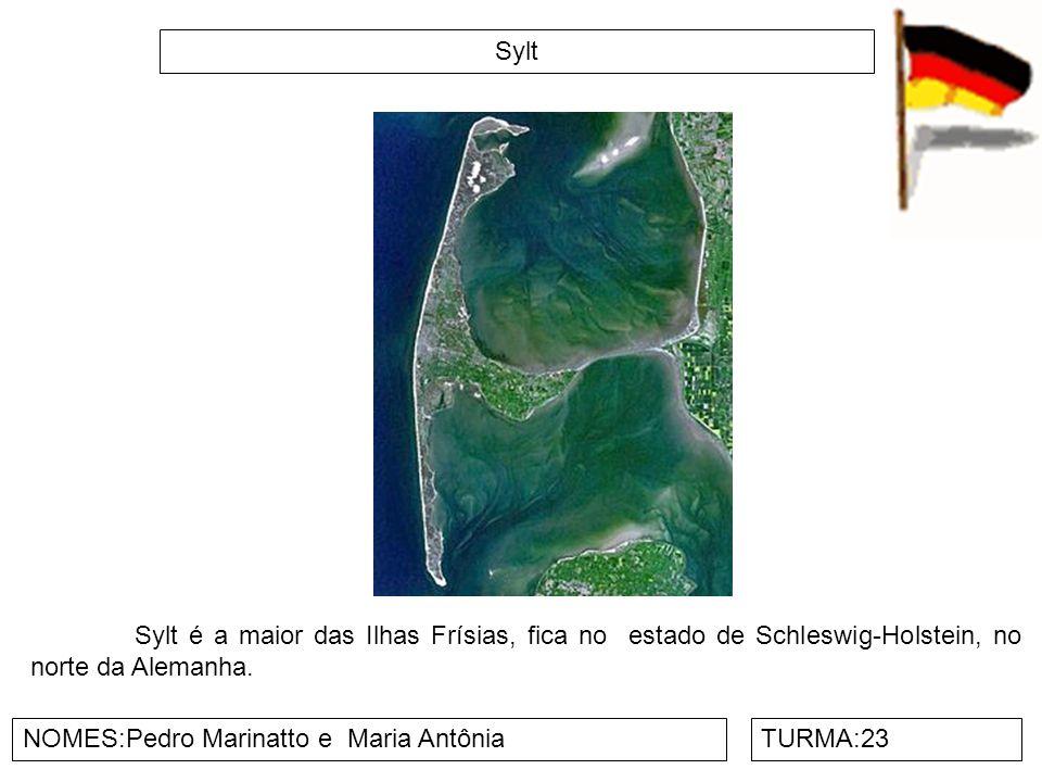 Sylt NOMES:Pedro Marinatto e Maria AntôniaTURMA:23 Sylt é a maior das Ilhas Frísias, fica no estado de Schleswig-Holstein, no norte da Alemanha.