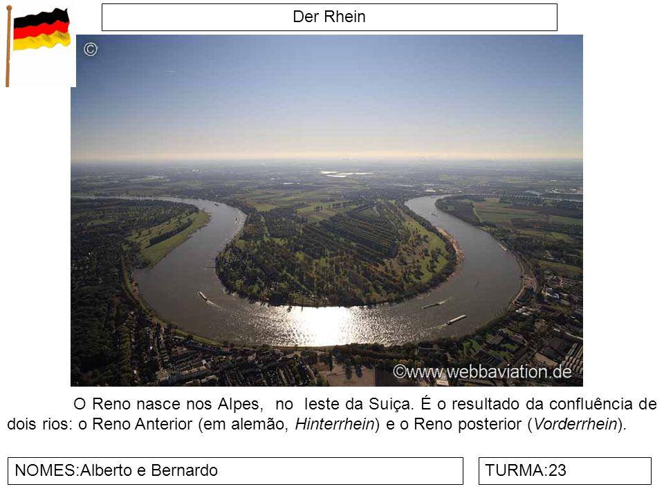 Der Rhein NOMES:Alberto e BernardoTURMA:23 O Reno nasce nos Alpes, no leste da Suiça. É o resultado da confluência de dois rios: o Reno Anterior (em a