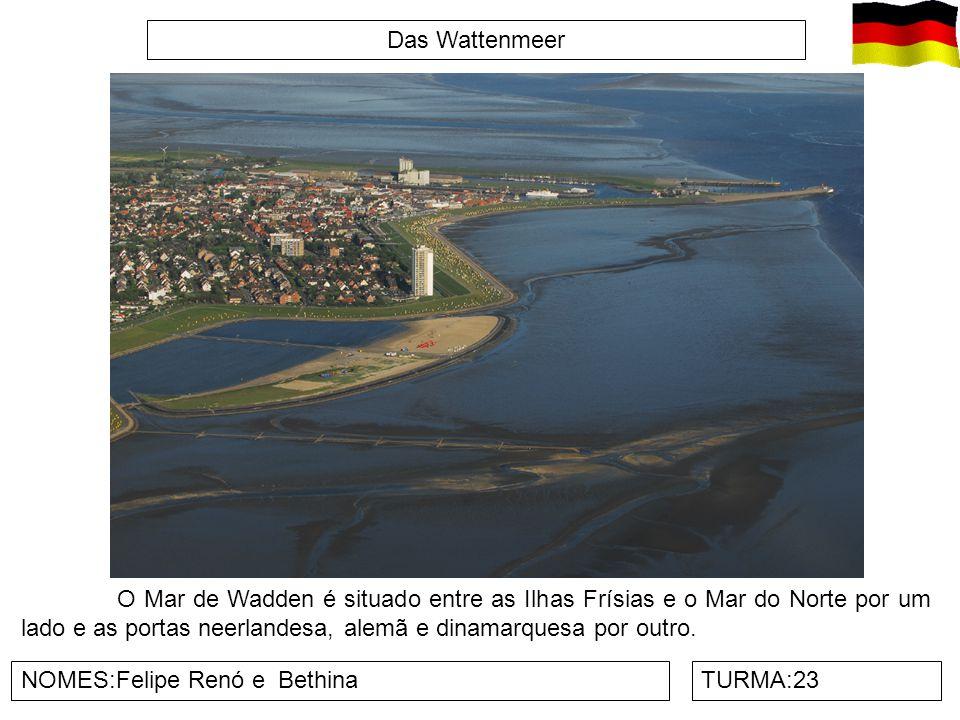 Das Wattenmeer NOMES:Felipe Renó e BethinaTURMA:23 O Mar de Wadden é situado entre as Ilhas Frísias e o Mar do Norte por um lado e as portas neerlande