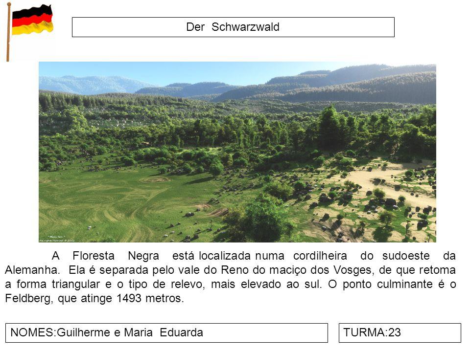 Der Schwarzwald NOMES:Guilherme e Maria EduardaTURMA:23 A Floresta Negra está localizada numa cordilheira do sudoeste da Alemanha. Ela é separada pelo