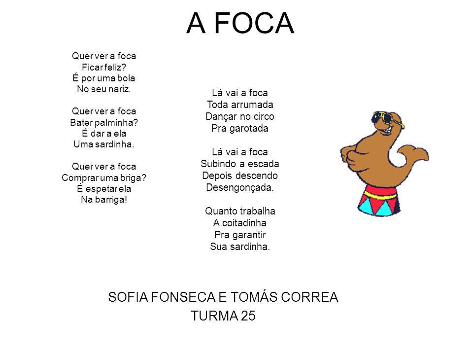 A FOCA SOFIA FONSECA E TOMÁS CORREA TURMA 25 Quer ver a foca Ficar feliz.