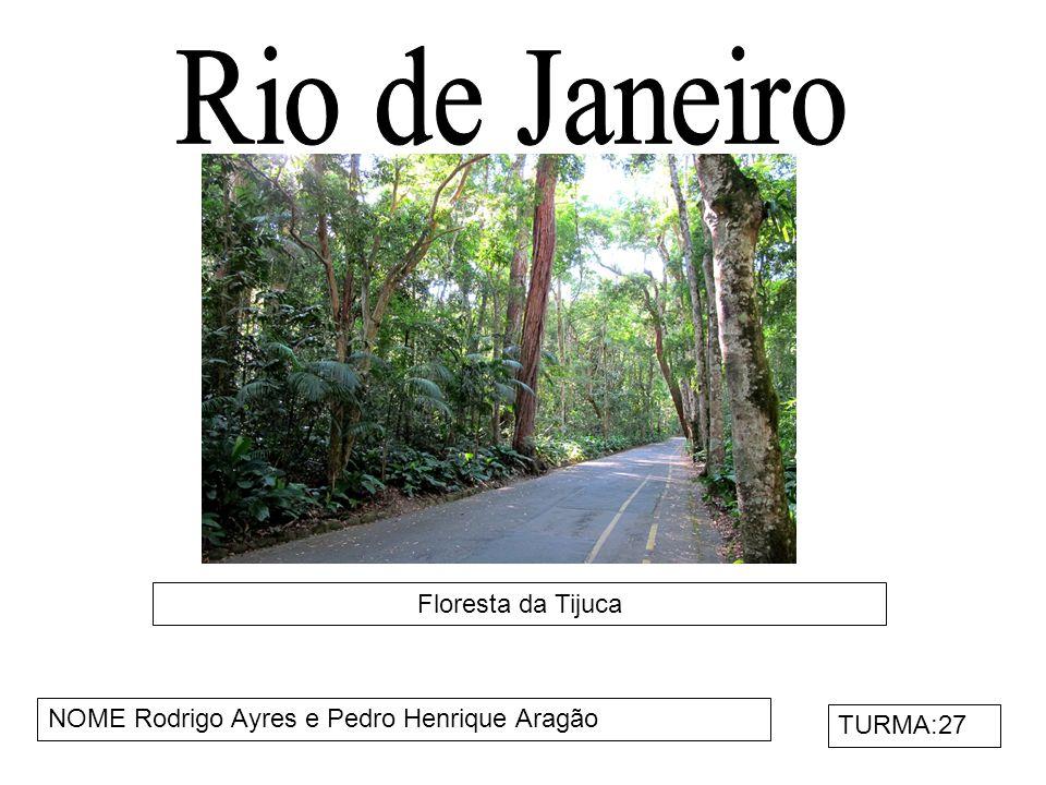 Maracanã NOMES:Henrique Silva e Matheus Bodsten TURMA:27