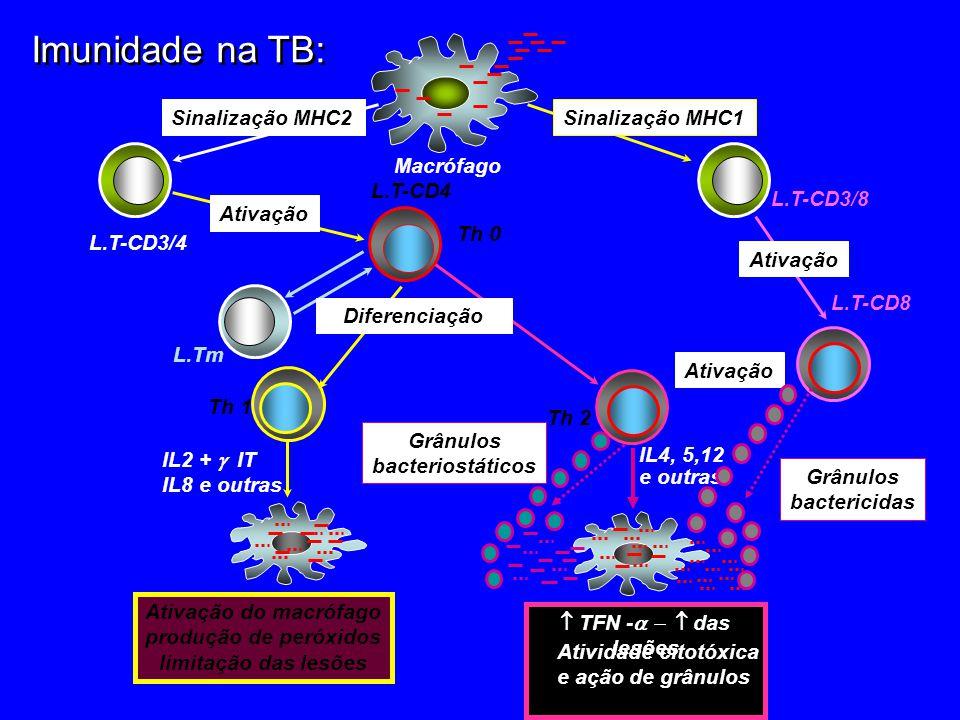 Imunidade na TB: Sinalização MHC1Sinalização MHC2 L.T-CD3/8 L.T-CD3/4 Macrófago 4 L.T-CD8 Ativação L.T-CD4 Th 0 Ativação L.Tm Th 1 Th 2 Diferenciação Ativação do macrófago produção de peróxidos limitação das lesões IL2 + IT IL8 e outras TFN - das lesões IL4, 5,12 e outras Atividade citotóxica e ação de grânulos Ativação Grânulos bactericidas Grânulos bacteriostáticos