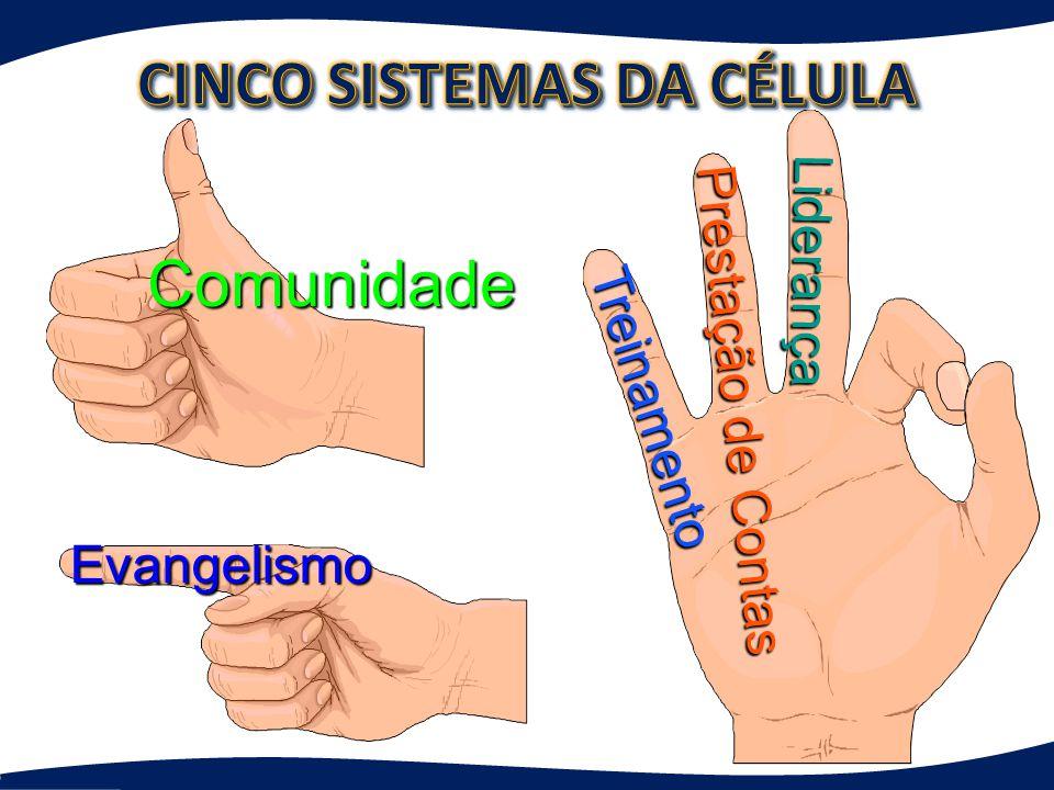 Os cinco sistemas da vida da célula Os cinco sistemas da vida da célula Cristo: o DNA da célula Cristo: o DNA da célula O encontro da célula O encontr