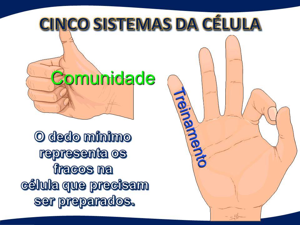 Comunidade Todos os dedos trabalham em conexão com o polegar.