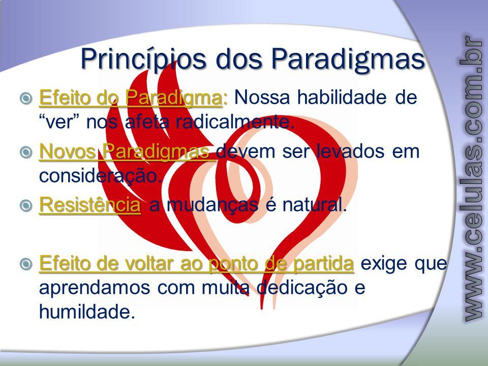 Princípios dos Paradigmas Efeito do Paradigma: Efeito do Paradigma: Nossa habilidade de ver nos afeta radicalmente. Novos Paradigmas Novos Paradigmas