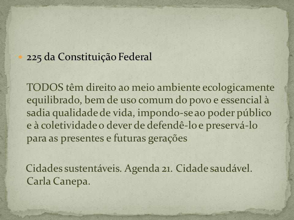 225 da Constituição Federal TODOS têm direito ao meio ambiente ecologicamente equilibrado, bem de uso comum do povo e essencial à sadia qualidade de v