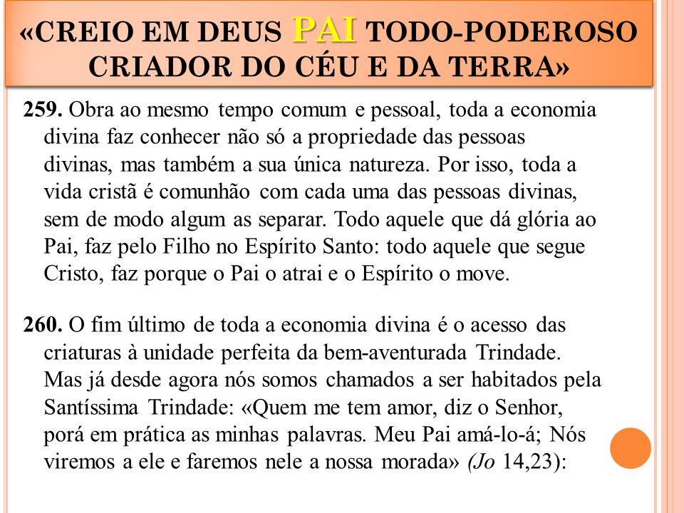 259. Obra ao mesmo tempo comum e pessoal, toda a economia divina faz conhecer não só a propriedade das pessoas divinas, mas também a sua única naturez