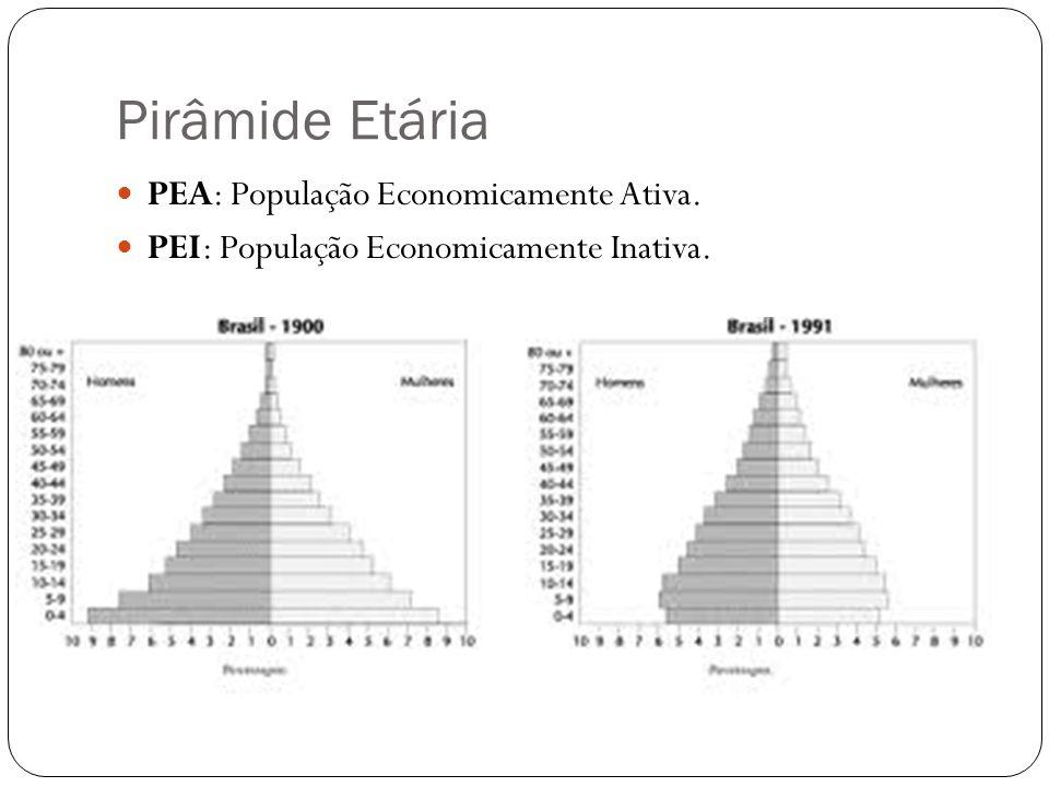 Pirâmide Etária PEA: População Economicamente Ativa. PEI: População Economicamente Inativa.