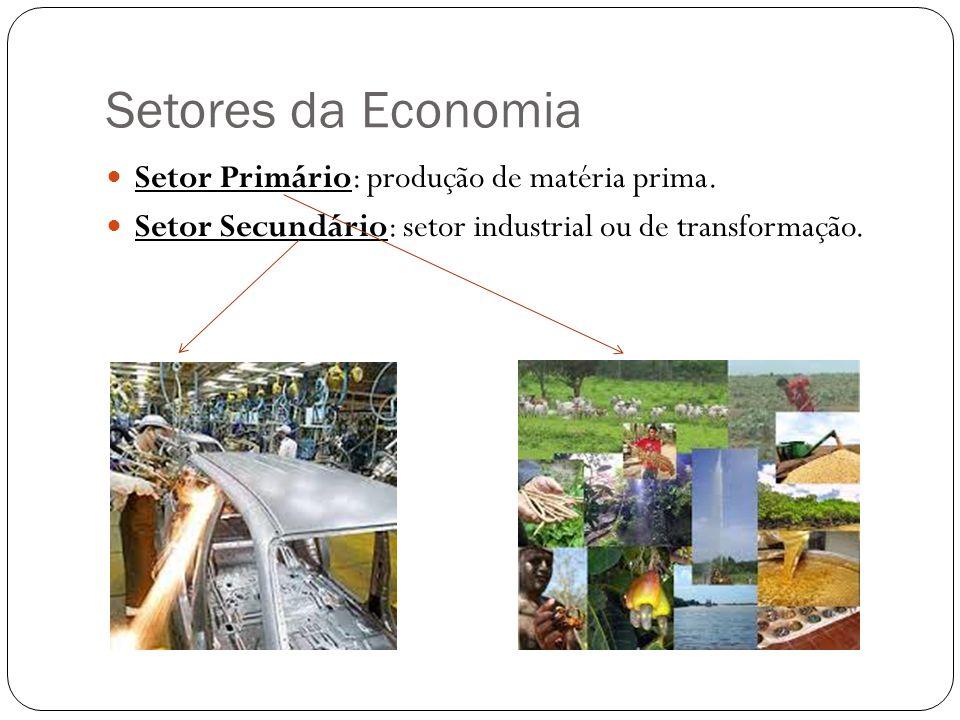 Setores da Economia Setor Primário: produção de matéria prima. Setor Secundário: setor industrial ou de transformação.