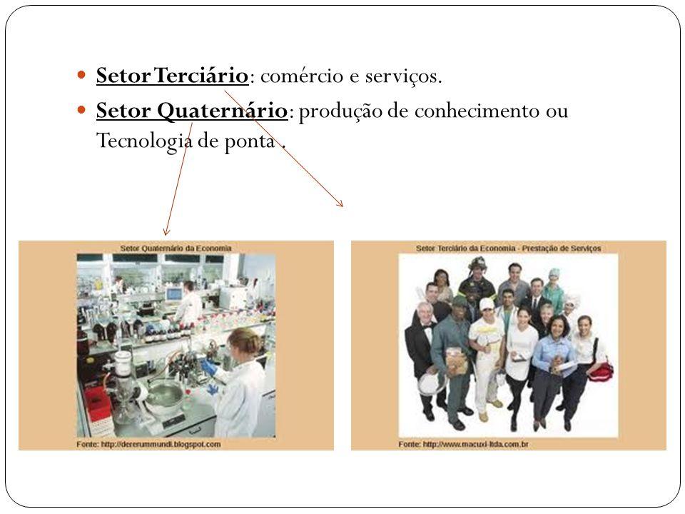 Setor Terciário: comércio e serviços. Setor Quaternário: produção de conhecimento ou Tecnologia de ponta.