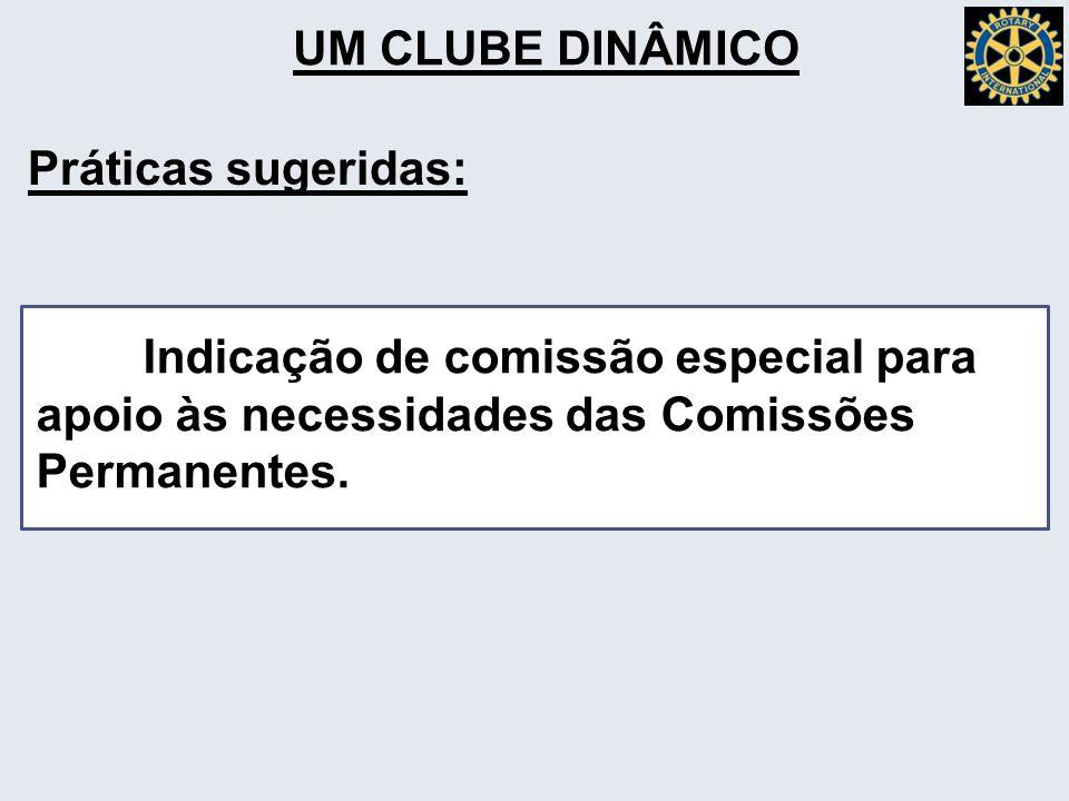 UM CLUBE DINÂMICO Indicação de comissão especial para apoio às necessidades das Comissões Permanentes.