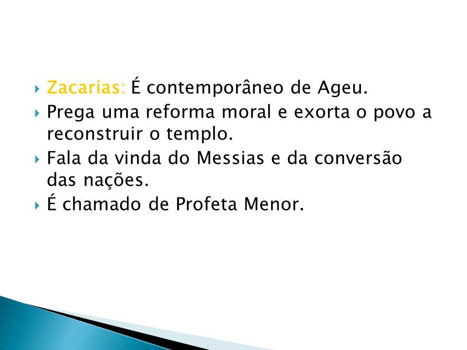 Zacarias: É contemporâneo de Ageu. Prega uma reforma moral e exorta o povo a reconstruir o templo. Fala da vinda do Messias e da conversão das nações.