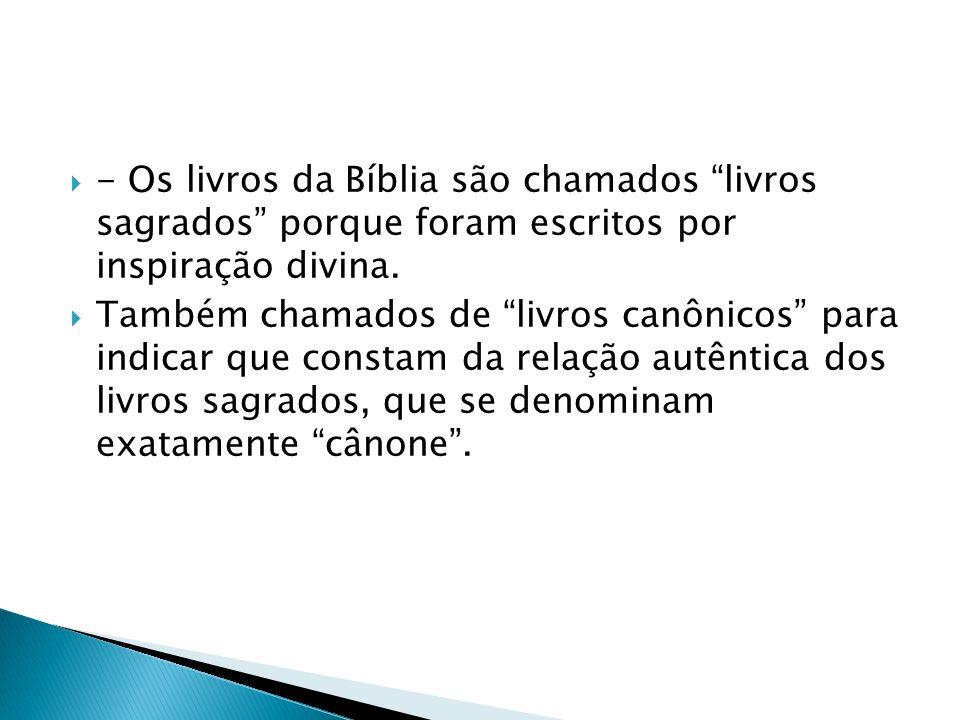 - Os livros da Bíblia são chamados livros sagrados porque foram escritos por inspiração divina. Também chamados de livros canônicos para indicar que c
