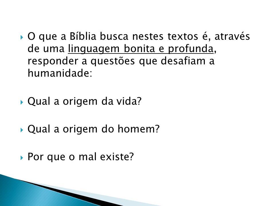 O que a Bíblia busca nestes textos é, através de uma linguagem bonita e profunda, responder a questões que desafiam a humanidade: Qual a origem da vid