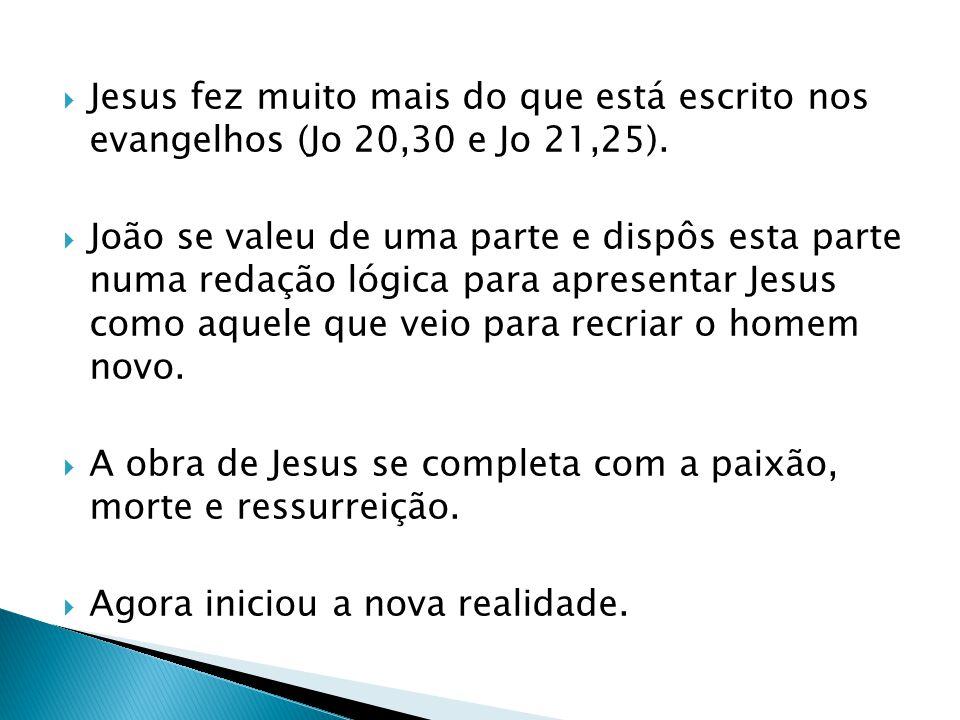 Jesus fez muito mais do que está escrito nos evangelhos (Jo 20,30 e Jo 21,25). João se valeu de uma parte e dispôs esta parte numa redação lógica para