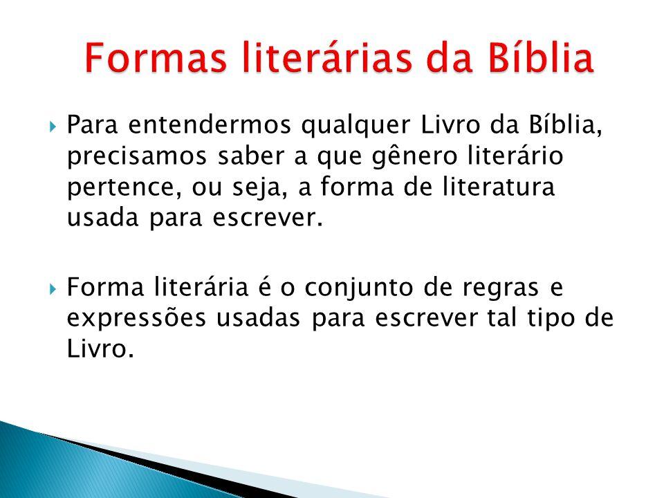 Para entendermos qualquer Livro da Bíblia, precisamos saber a que gênero literário pertence, ou seja, a forma de literatura usada para escrever. Forma