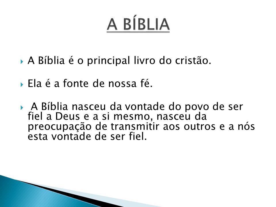 A Bíblia é o principal livro do cristão. Ela é a fonte de nossa fé. A Bíblia nasceu da vontade do povo de ser fiel a Deus e a si mesmo, nasceu da preo
