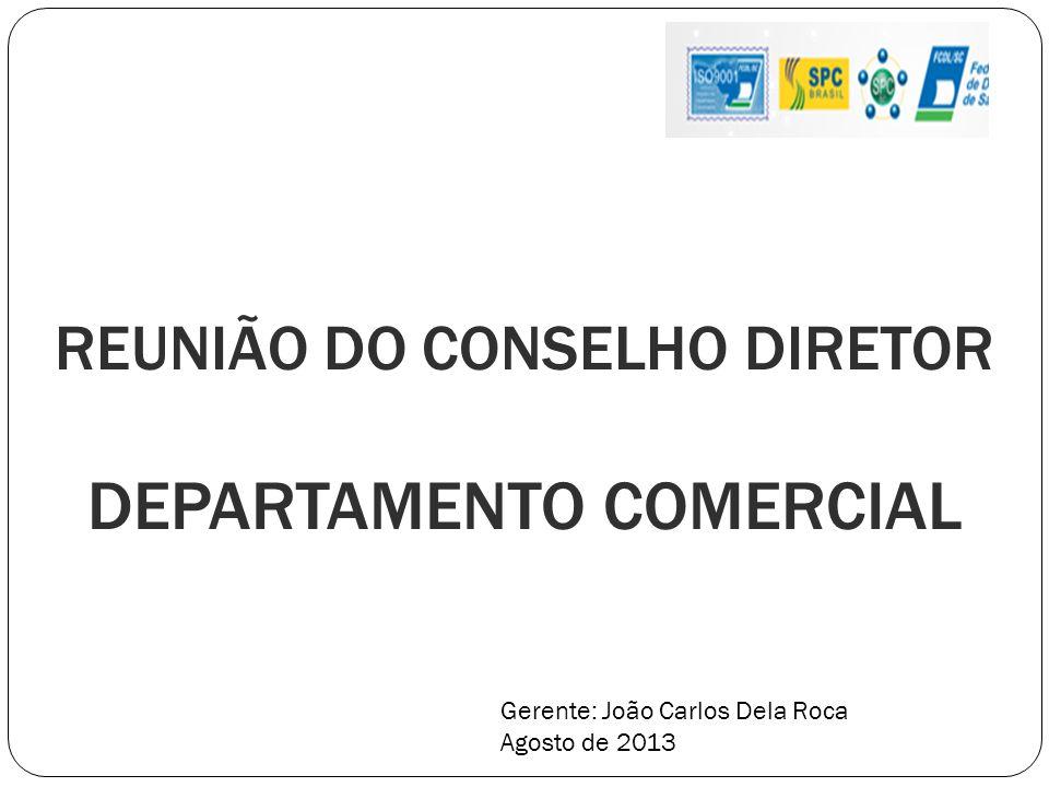 REUNIÃO DO CONSELHO DIRETOR DEPARTAMENTO COMERCIAL Gerente: João Carlos Dela Roca Agosto de 2013