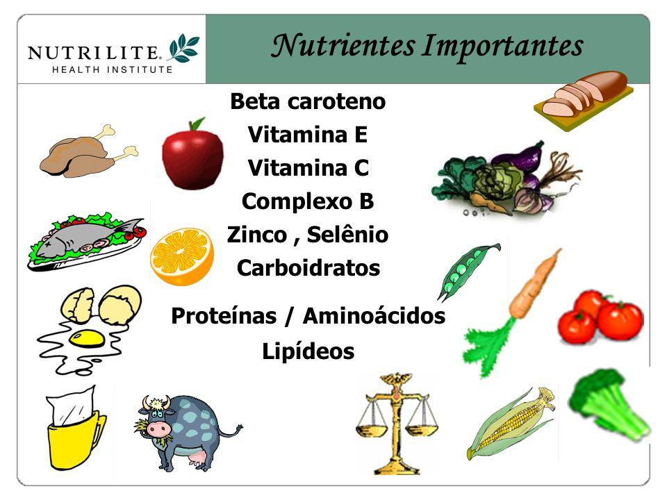 Beta caroteno Vitamina E Vitamina C Complexo B Zinco, Selênio Carboidratos Proteínas / Aminoácidos Lipídeos Nutrientes Importantes