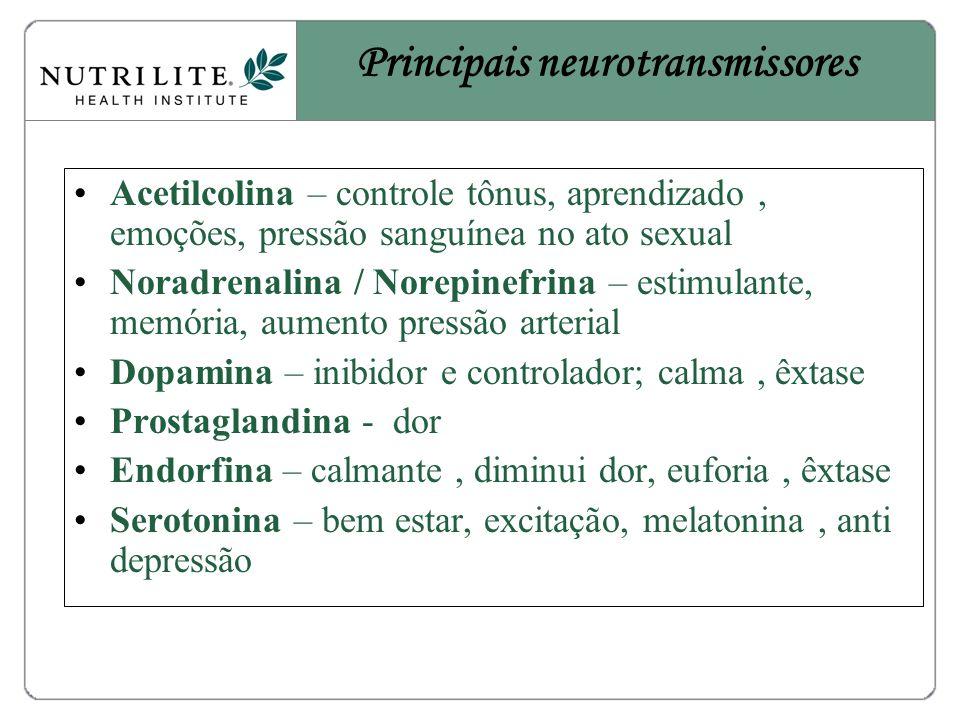 Acetilcolina – controle tônus, aprendizado, emoções, pressão sanguínea no ato sexual Noradrenalina / Norepinefrina – estimulante, memória, aumento pressão arterial Dopamina – inibidor e controlador; calma, êxtase Prostaglandina - dor Endorfina – calmante, diminui dor, euforia, êxtase Serotonina – bem estar, excitação, melatonina, anti depressão Principais neurotransmissores