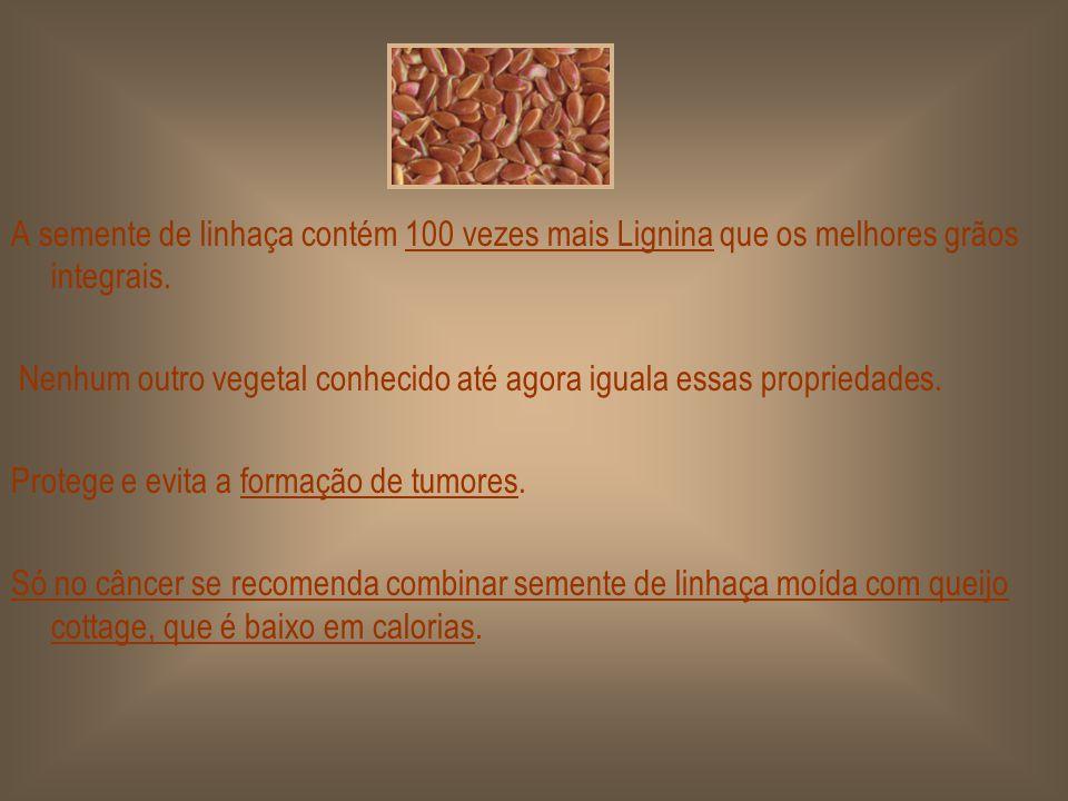 CÂNCER: de mama, de próstata, de cólon, de pulmão, etc. LIGNINA. A semente de linhaça contém 27 componentes anti- cancerígenos, um deles é a LIGNINA.