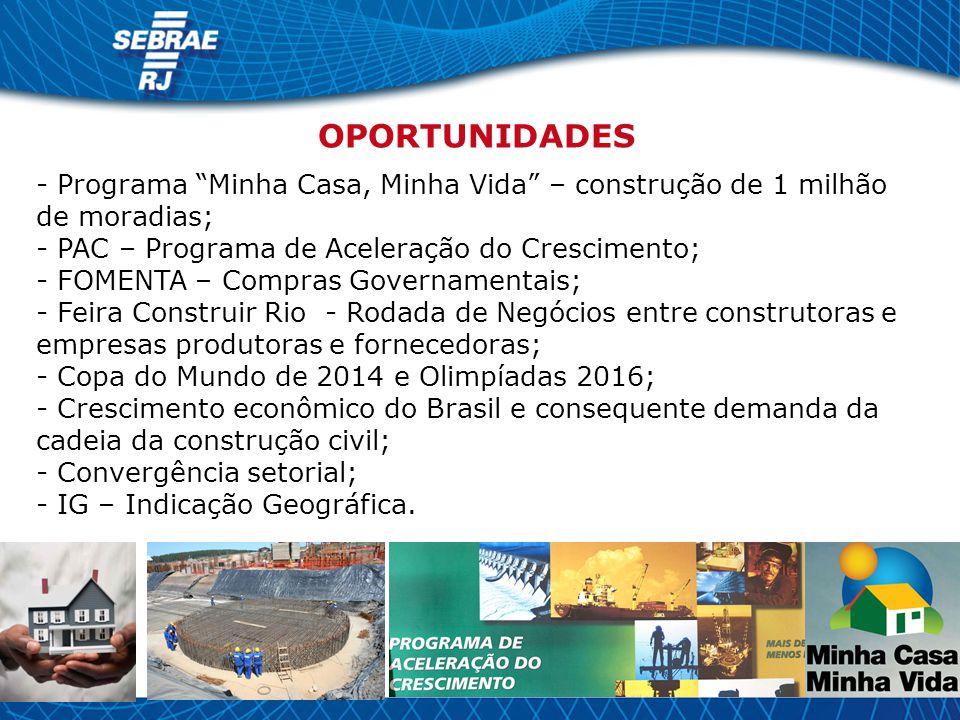 - Programa Minha Casa, Minha Vida – construção de 1 milhão de moradias; - PAC – Programa de Aceleração do Crescimento; - FOMENTA – Compras Governament