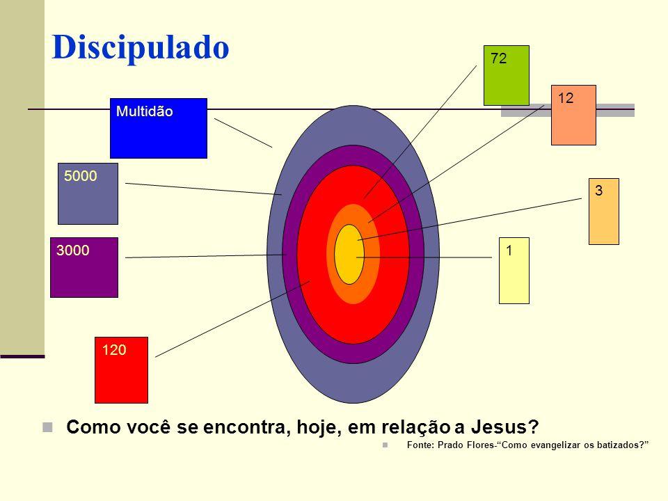Como você se encontra, hoje, em relação a Jesus? Fonte: Prado Flores-Como evangelizar os batizados? 1 3 12 72 120 3000 5000 Multidão
