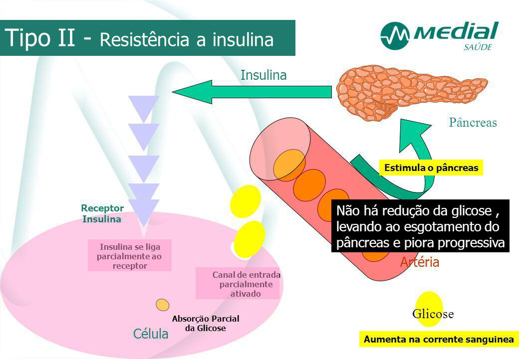 Célula Receptor Insulina Tipo II - Resistência a insulina Pâncreas Artéria Glicose Aumenta na corrente sanguinea Estimula o pâncreas Insulina se liga