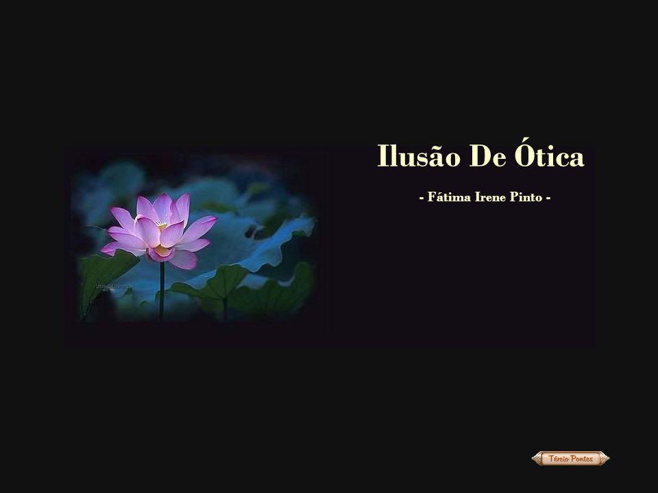 Ilusão De Ótica - Fátima Irene Pinto -