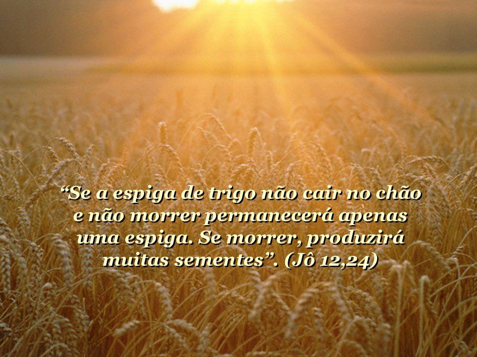 Se a espiga de trigo não cair no chão e não morrer permanecerá apenas uma espiga.
