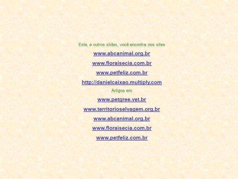 Este, e outros slides, você encontra nos sites www.abcanimal.org.br www.floraisecia.com.br www.petfeliz.com.br http://danielcaixao.multiply.com Artigos em www.petgree.vet.br www.territorioselvagem.org.br www.abcanimal.org.br www.floraisecia.com.br www.petfeliz.com.br