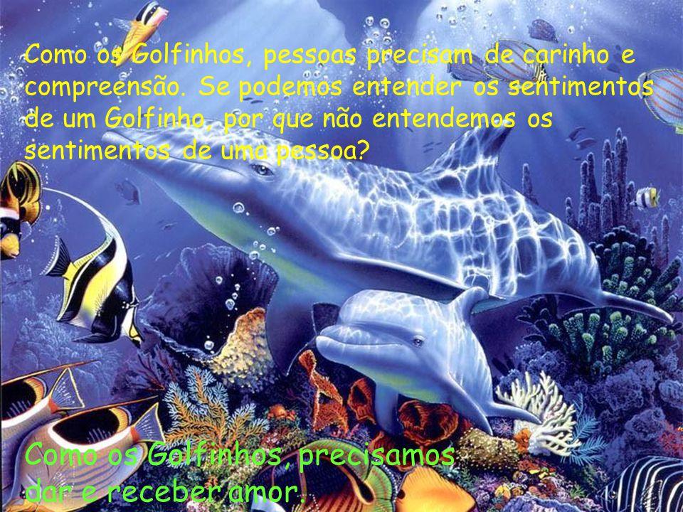 Como os Golfinhos, pessoas precisam de carinho e compreensão. Se podemos entender os sentimentos de um Golfinho, por que não entendemos os sentimentos