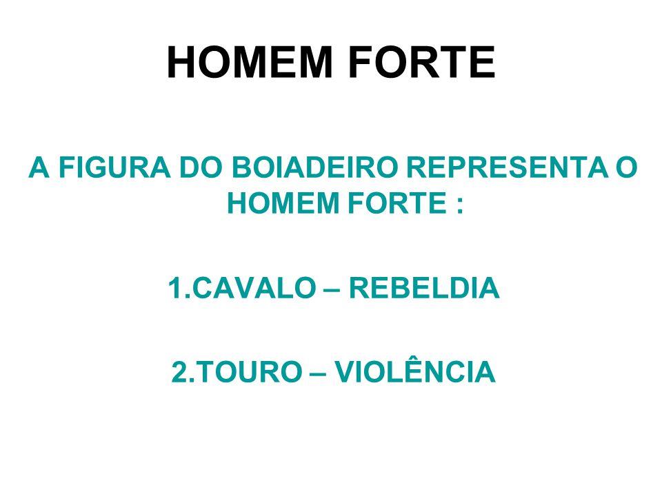 A FIGURA DO BOIADEIRO REPRESENTA O HOMEM FORTE : 1.CAVALO – REBELDIA 2.TOURO – VIOLÊNCIA