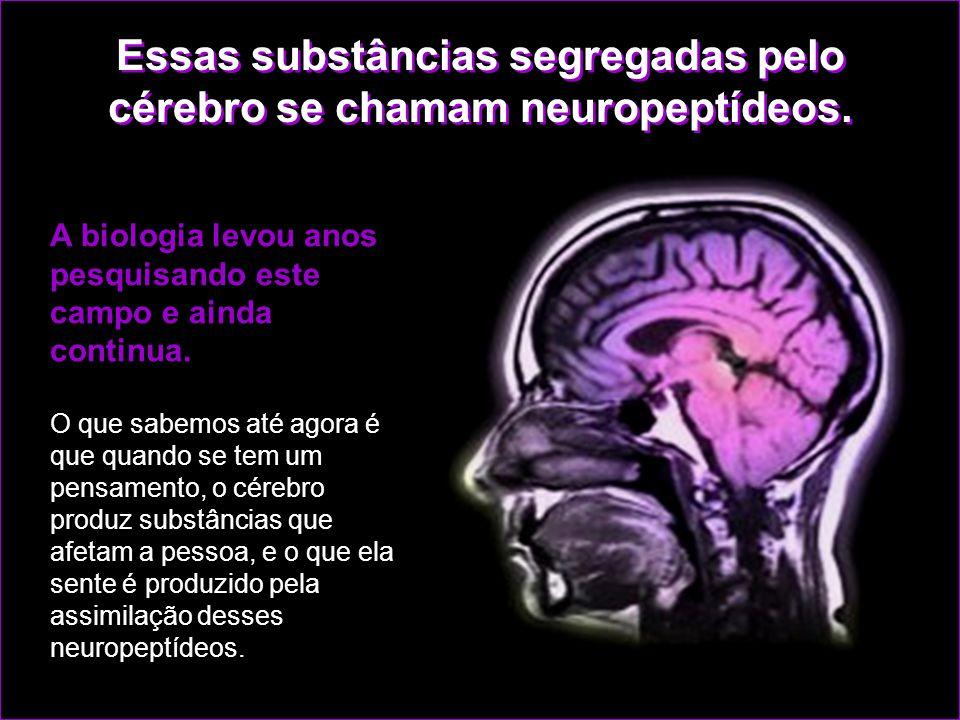 A ciência já descobriu que quando se tem um pensamento o cérebro produz substâncias que abrem o que se poderia chamar de janela para a atuação dos sen