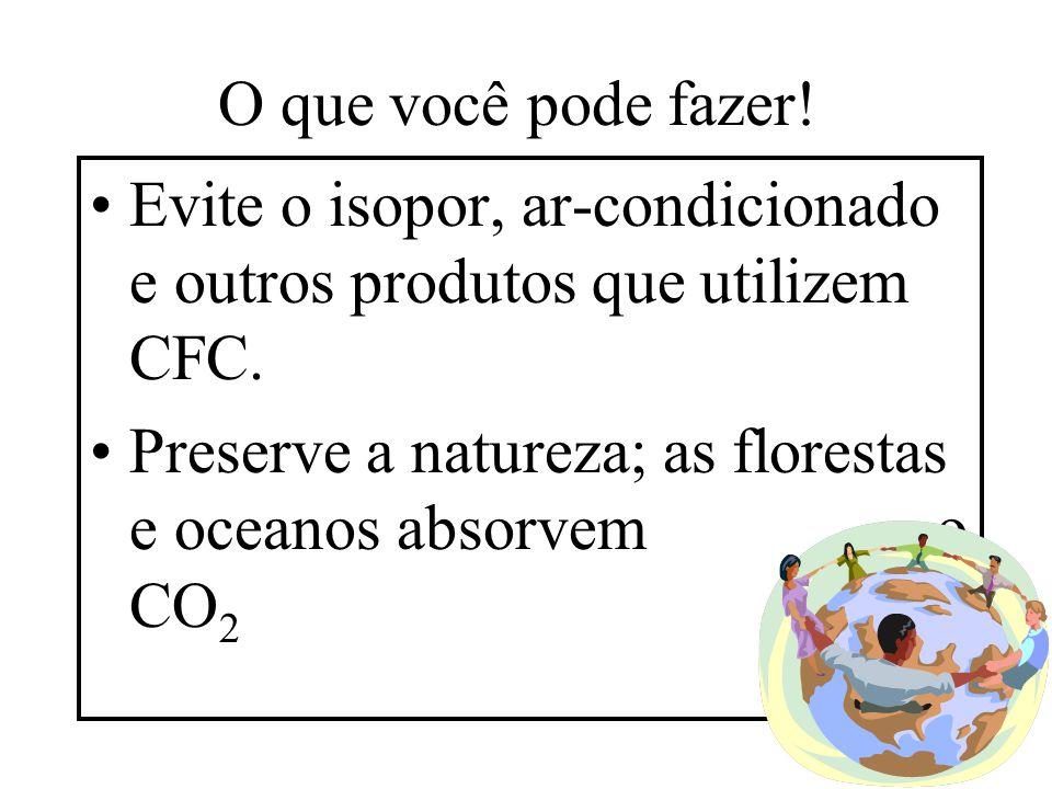O que você pode fazer! Evite o isopor, ar-condicionado e outros produtos que utilizem CFC. Preserve a natureza; as florestas e oceanos absorvem o CO 2