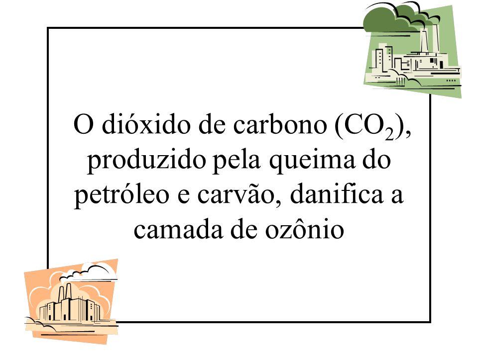 O dióxido de carbono (CO 2 ), produzido pela queima do petróleo e carvão, danifica a camada de ozônio