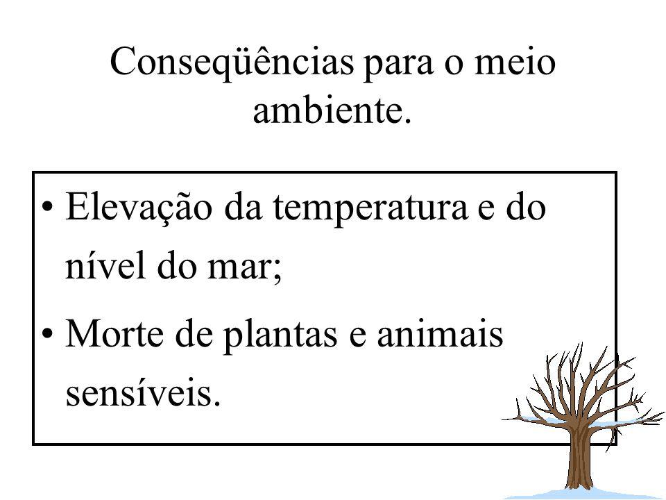 Conseqüências para o meio ambiente. Elevação da temperatura e do nível do mar; Morte de plantas e animais sensíveis.